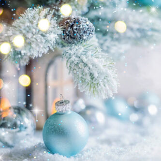 Christmas/Winter Fragrance Oils